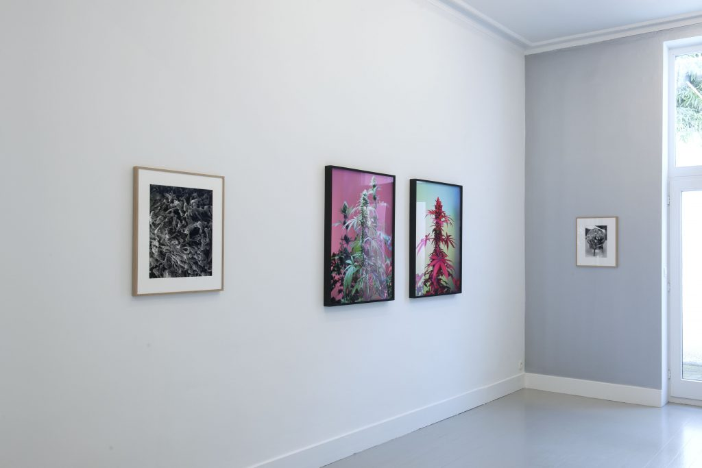 The invisible index, installation view at Jan Mot, 2021