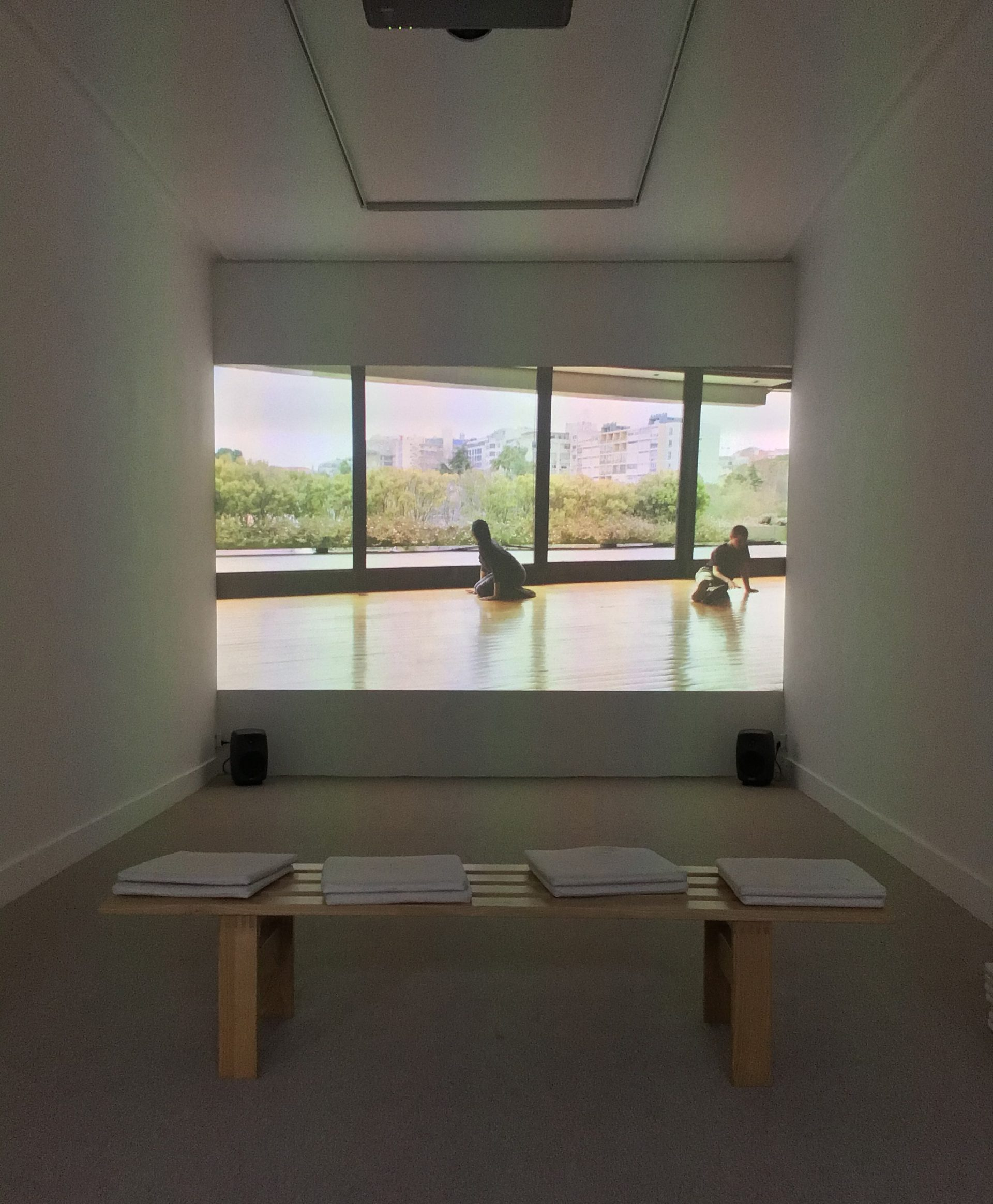 Manon de Boer - installation view at Jan Mot, 2020